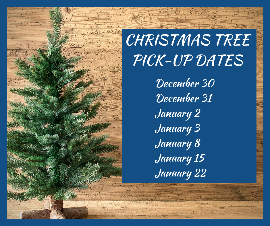Christmas Tree Pick-up Dates